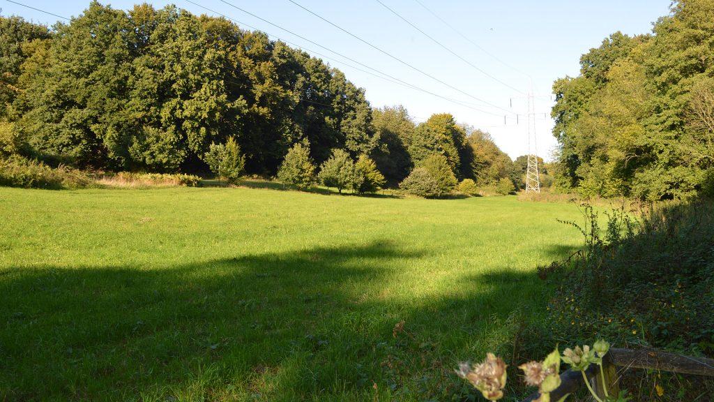 Naturschutzgebiet Uhlenbachtal